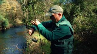 Trout Fishing – Portugal