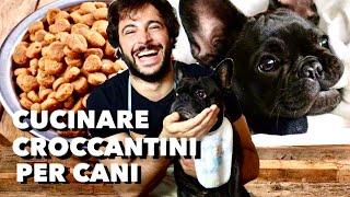 Croccantini per cani fatti in casa | Cucina Buttata - Guglielmo Scilla - Willwoosh
