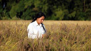 Haanduk   Assamese Film   With English Subtitles
