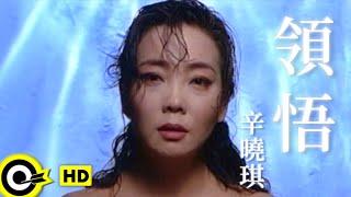 辛曉琪 Winnie Hsin【領悟 Understanding】Official Music ...