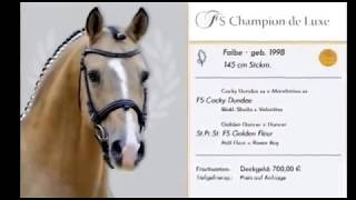 video of FS Champion de Luxe