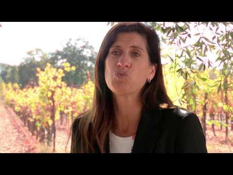 Sonoma County Vintners Testimonial