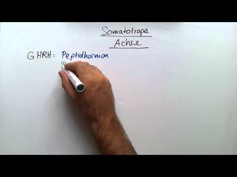 Die Rezensionen almag-01 die Thrombophlebitis
