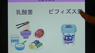 宝塚受験生のダイエット講座〜美肌になるポイント③〜乳酸菌・ビフィズス菌のサムネイル