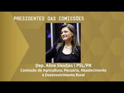 Câmara elege presidentes de dez comissões permanentes da Casa - 10/03/21