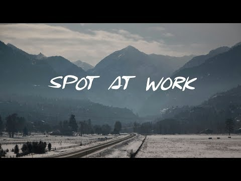 Spot at Work | A Lovely Chill Mix