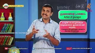 Standard 10   Biology   Class – 17