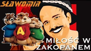 Sławomir - Miłość w Zakopanem (Alvin i wiewórki)