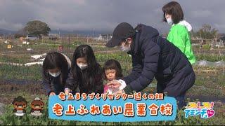 みんなで楽しく野菜を育てよう!「老上ふれあい農業合校」草津市 老上まちづくりセンター