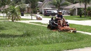Lawn care vlog #28 Fast mowing a semi tall yard