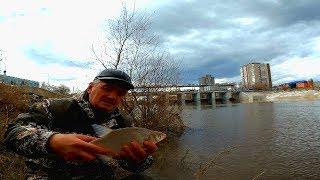 Рыбалка 45 вк