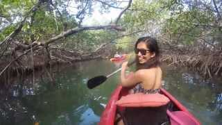 preview picture of video 'kayaking at lucayan national park, freeport, grand bahama.'