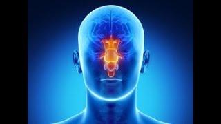 Brain Stem Stroke Treatment
