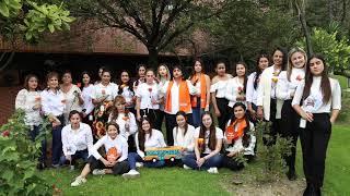 Campaña Día Internacional de la Eliminación de la Violencia contra la Mujer