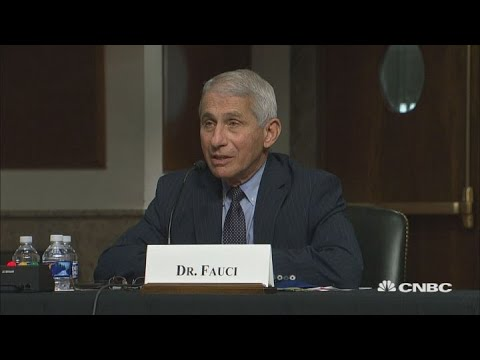 Dr. Anthony Fauci pushes back on Sen. Rand Paul's claim that New York has achieved herd immunity