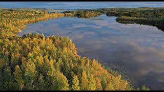 Otoño de Papá Noel Santa Claus en Laponia Finlandia - colores del otoño Rovaniemi  Círculo polar