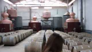 preview picture of video 'Wine barrels in a Thai winery near Loei'