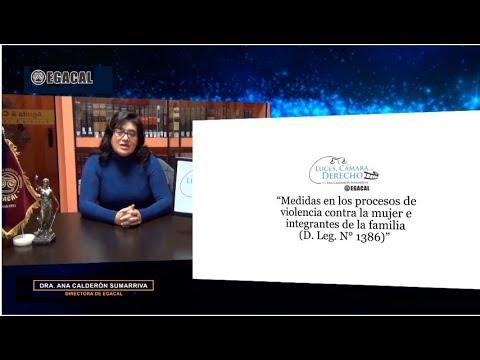 Programa 91 - Violencia contra la mujer y familia - Modificaciones por D Leg 1386 - Luces Cámara Derecho