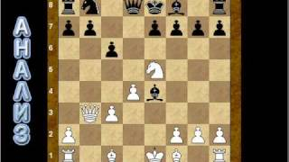 Шахматное видео  ( часть 1 )
