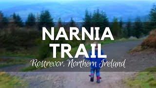 Narnia Trail - CS Lewis - Rostrevor Northern Ireland