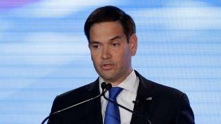Marco Rubio disregards WikiLeaks emails