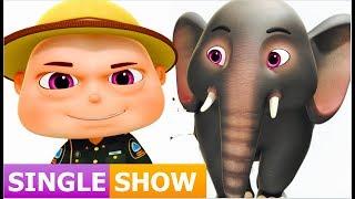 Zool Babies Rescue Elephant ( Single Episode ) Zool Babies Series | Videogyan Kids Shows