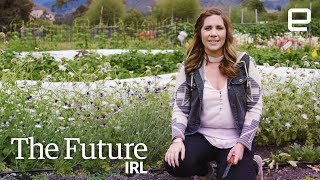 The farming robots of tomorrow are here today | The Future IRL