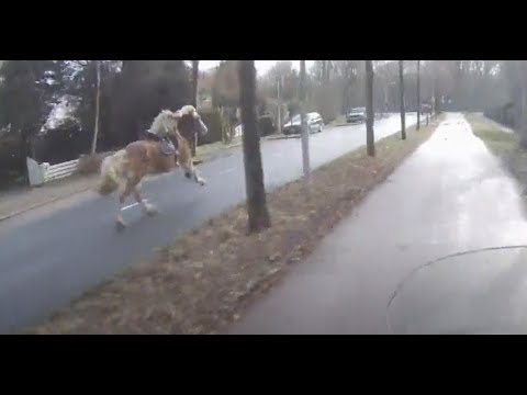 Stopping a runaway horse.