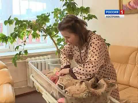 Жители Костромской области начали подавать заявления на ежемесячные выплаты после рождения детей