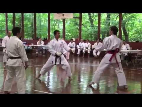 Shotokan Karate Master Camp 2011 Men's black belt kumite