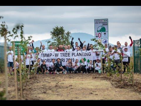 Morizukuri czyli sadzenie lasu w fabryce w Wałbrzychu przez pracowników i ich rodziny