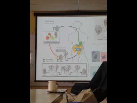 Giardia และ Enterofuril