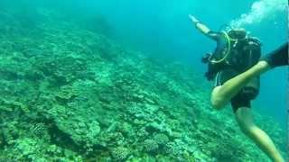 preview picture of video 'baptême de plongée à Saint Gilles les Bains - La Reunion'