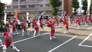 舞華(ひのよさこい2012・夕方の流し・百花繚乱~心ひとつに~)