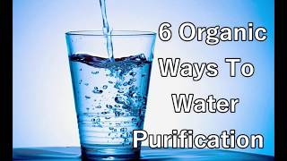 6 Simple Ways To Purify Water | 6 Natural Ways to Purify Water at Home ||