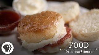 FOOD – DELICIOUS SCIENCE | Rewarding The Brain | Clip | PBS Food