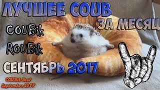 Лучшее видео по версии COUBik за Месяц Сентябрь 2017