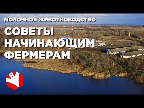 , title : 'Советы начинающим фермерам   Ошибки фермеров   Молочное животноводство