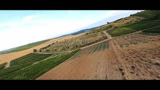 FPV DJI Racer +GoPro 10 + ReelSteady