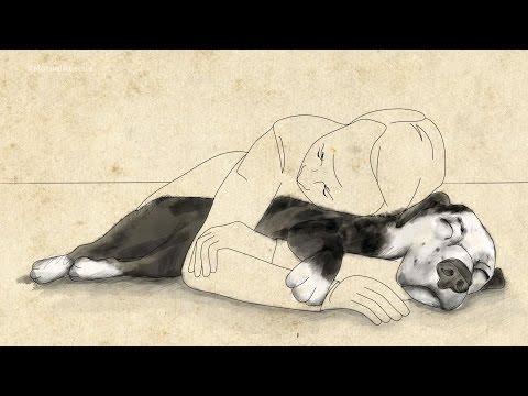 A Touching Story of a Dog Saving a Man's Life