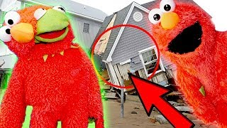 Elmo and Kermit The Frogs BIGGEST FREAK OUT EVER! (Gamdias Review)
