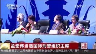 孟宏偉出任國際刑警組織ICPO主席百年來中國人首次掌舵台灣還有戲嗎?