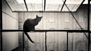 Yiruma - Spring Rain