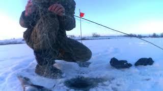 Рыболовный экрана для зимней рыбалки