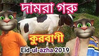 talking tom bangla funny eid - मुफ्त ऑनलाइन वीडियो