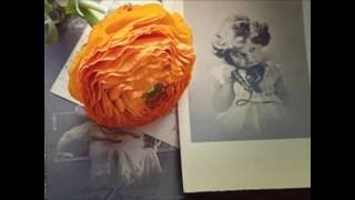 Video Radan PauL   Holčička (ukázka)
