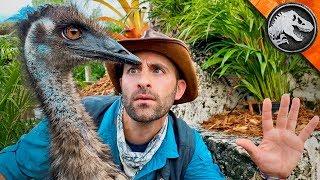 Jurassic World Explorers: RAPTOR TRAINING DAY! | Jurassic World