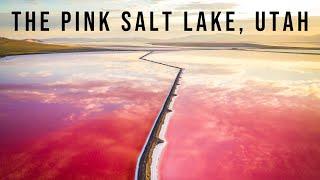 FLYING DRONES AT THE PINK SALT LAKES OF UTAH!