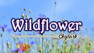 Wildflower   KARAOKE VERSION   As Popularized By Skylark
