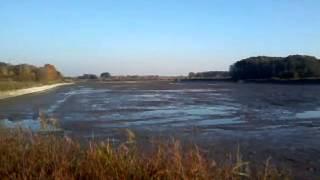 preview picture of video 'Zgniłe Błoto staw po jesiennym spuszczeniu wody biuro rachunkowe Łódź w opisie'